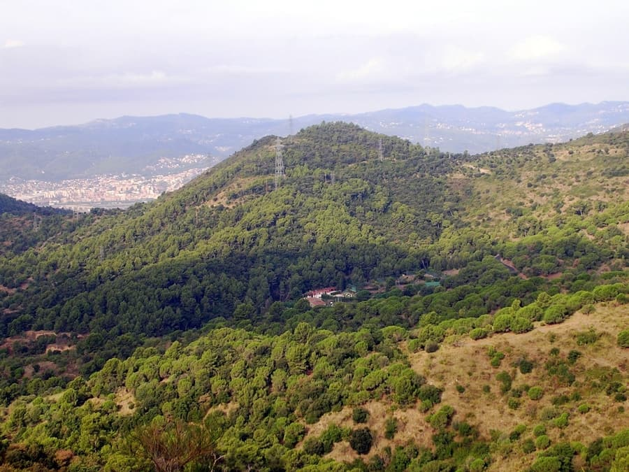 Collserola Natural Park, things to do in Barcelona Spain