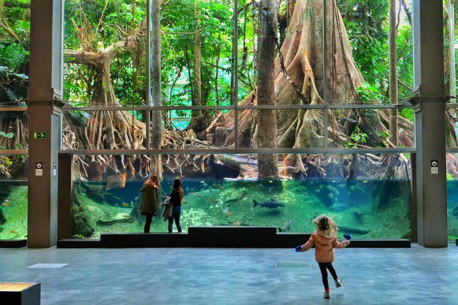 CosmoCaixa, places to visit in Barcelona with kids
