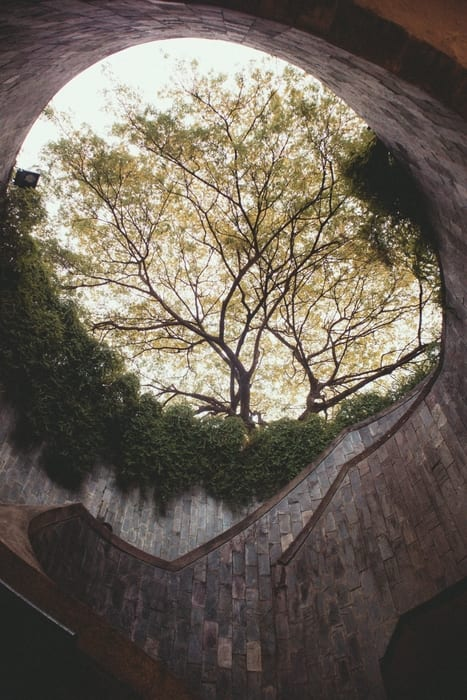 Fort Canning Park, what to in Singapore