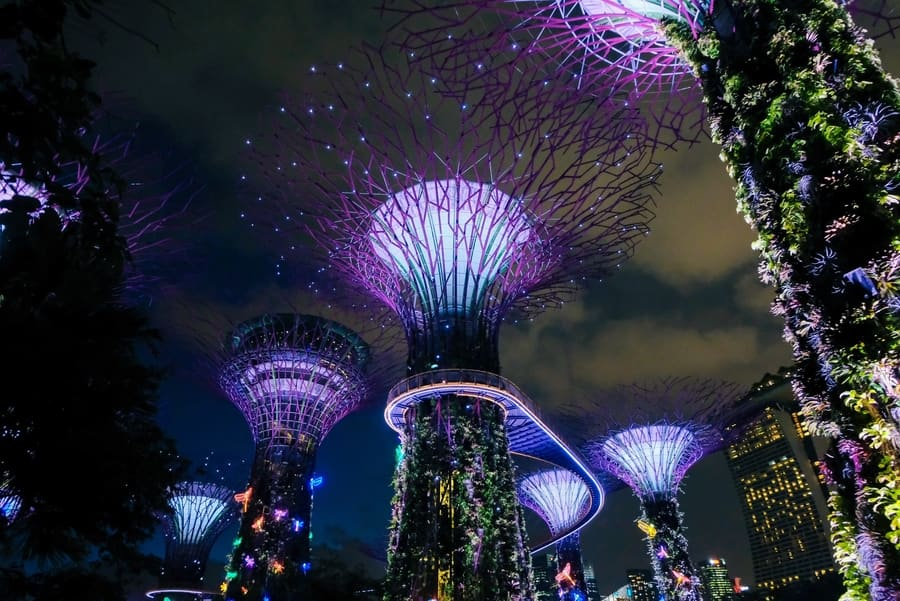 Things to do in Singapore gardens by the bay