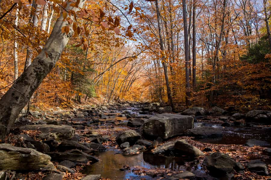 24. Hacklebarney State Park, a gorgeous place to visit in New Jersey