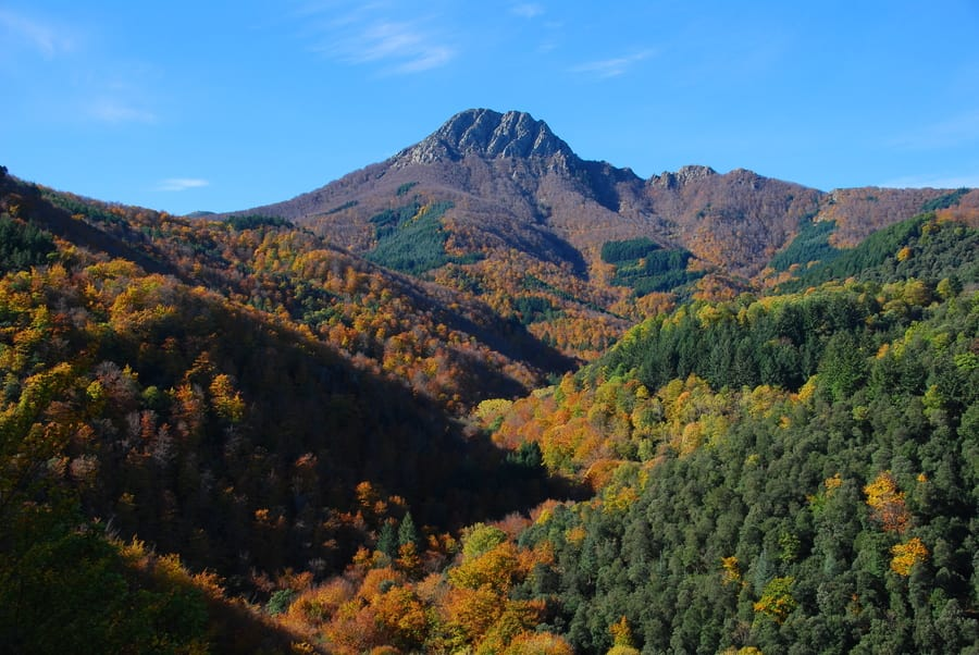 Montseny Natural Park, places to visit near Barcelona