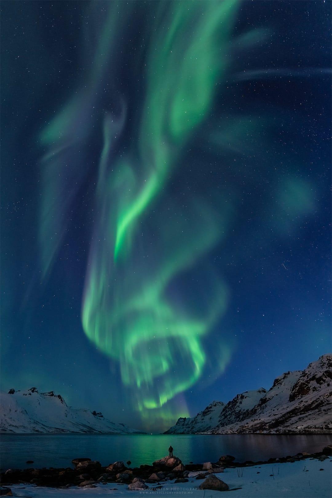 Mejores fotografías Auroras Boreal con nieve