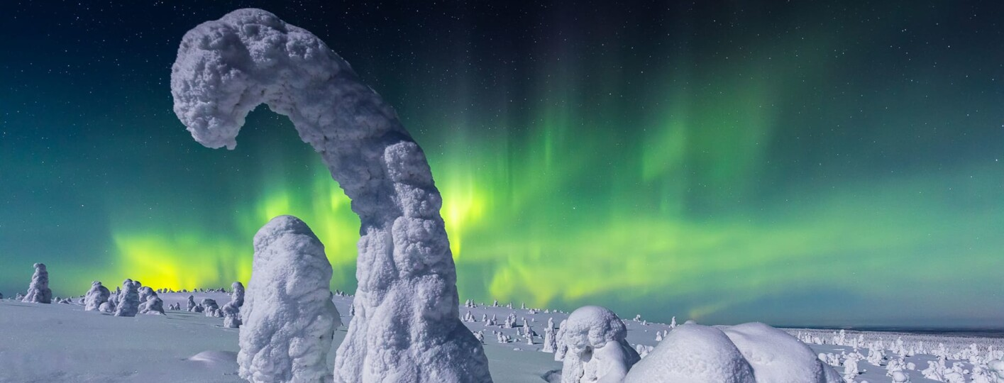 northern lights photographer of the year