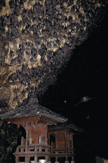 bat cave in goa lawah a great thing to do in bali goa lawah