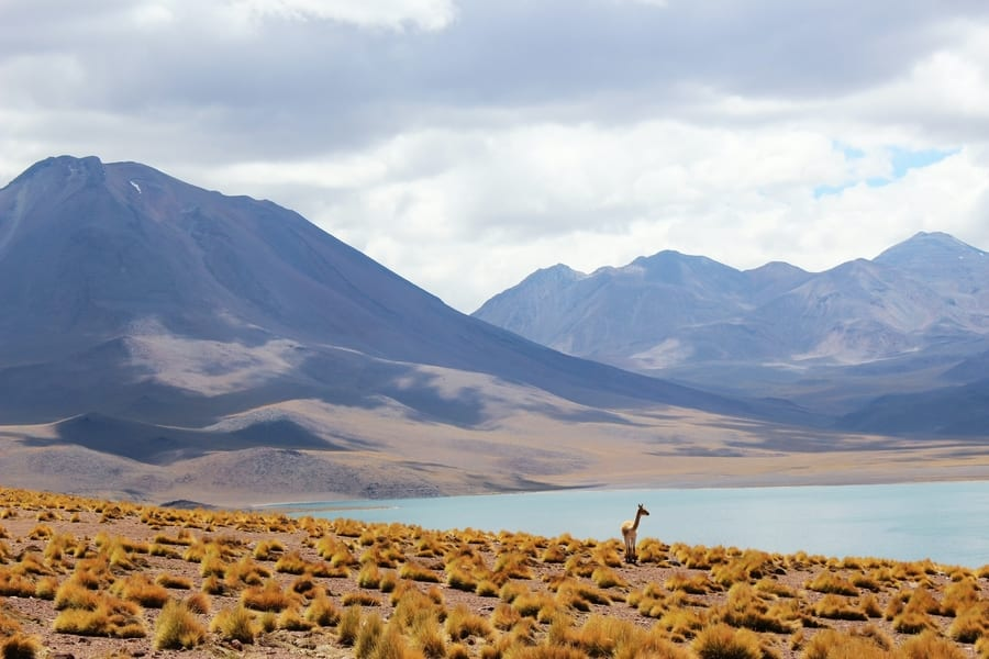 Chile reopening to international tourists