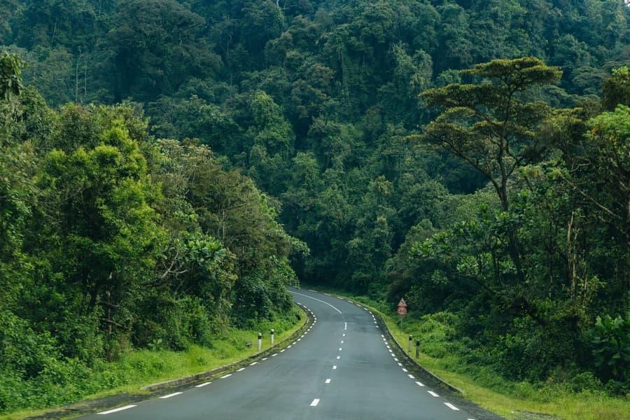Rwanda reopens borders for tourism