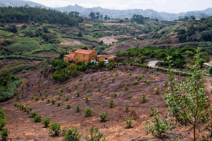 Las Casas de Lola y Rafael, casa rural en Gran Canaria
