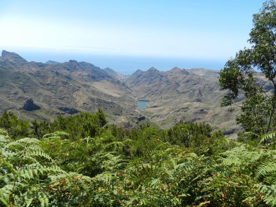 Llano de los Loros viewpoint, Anaga, Tenerife