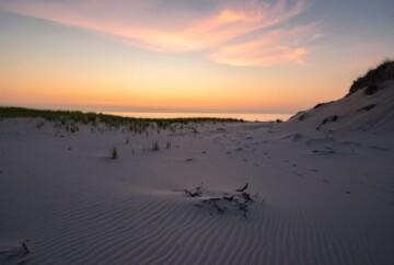 Island-Beach-State-Park-best-beaches-in-New-Jersey